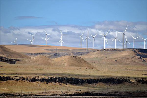 Image by Steve Wilson via Wikimedia Commons. https://commons.wikimedia.org/wiki/File:Shepherds_Flat_Wind_Farm_2011.jpg#/media/File:Shepherds_Flat_Wind_Farm_2011.jpg