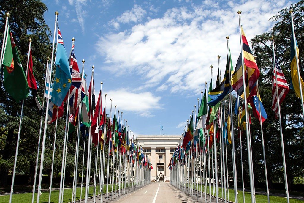 Image by Tom Page via Wikimedia Commons. https://commons.wikimedia.org/wiki/File:United_Nations_Flags_-_cropped.jpg