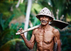 thai-worker-1800-bright